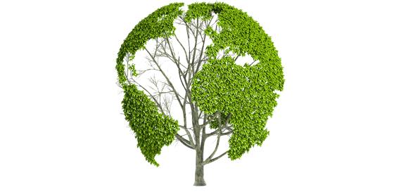 respeto-medioambiente